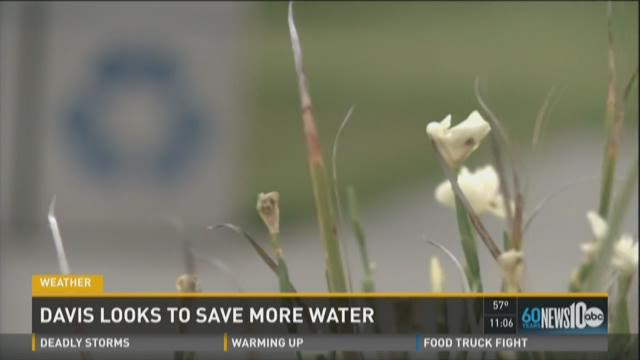 Davis looks to save more water