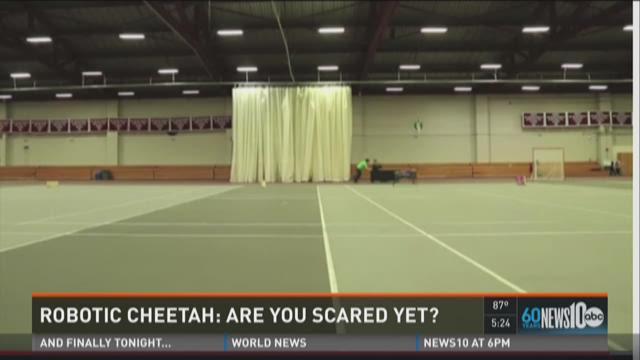 Scientist create, program robotic cheetah