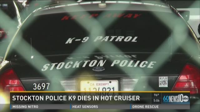 Stockton police K9 dies in hot cruiser