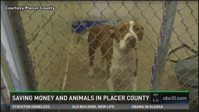 Saving money and animals in Placer County